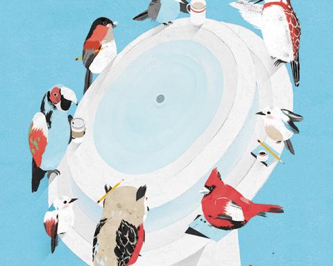 Birds illustration by Gracia Lam