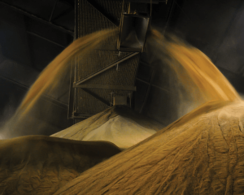 Distillers grain, a byproduct of corn ethanol production, being conveyed into a storage facility. Photo by Tyler Hamilton