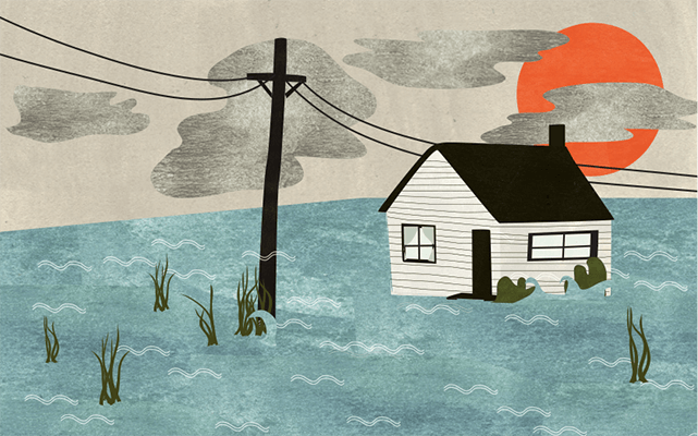 Flood Illustration by Julie Flett