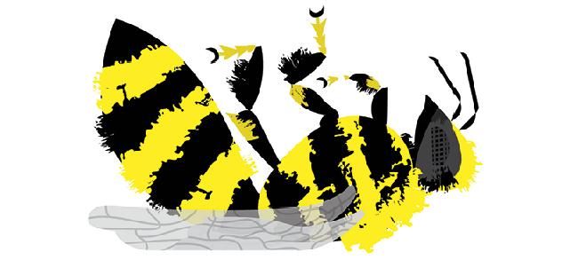 Bee Illustration by Matthew Hollister