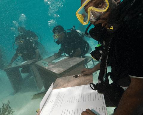 underwater desks