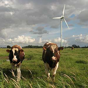 A German wind co-op in action. Photo by Dirk Ingo Franke