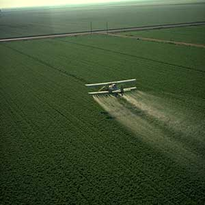 A crop-duster spraying pesticide on a California field
