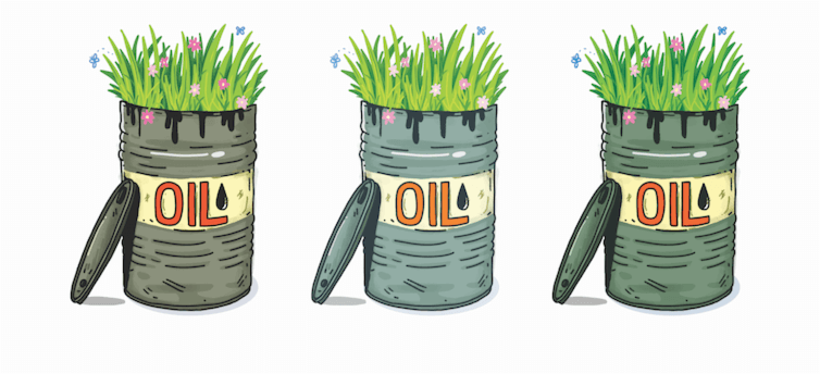 Oil Barrel with Flowers Growing out