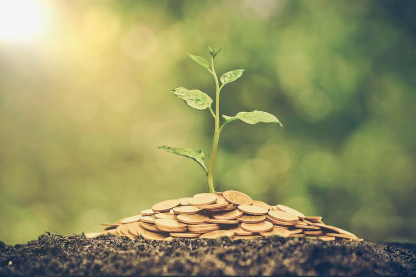 natural capital accounting