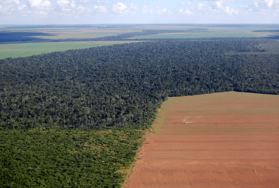 large-soy-field-cuts-into-the-forest-in-Brazil.