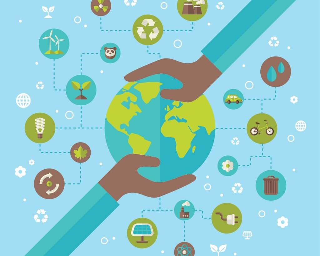 Our top five sustainability stories of 2020
